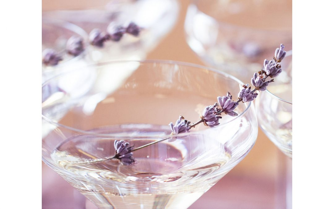 drinking champagne helps fighting dementia